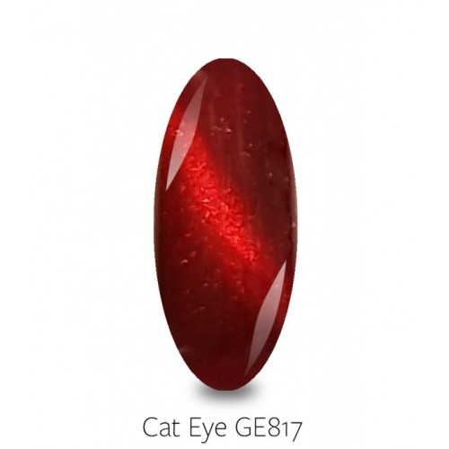 PB NAILS GELLAXY CAT EYE 817