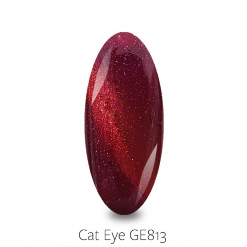PB NAILS GELLAXY CAT EYE 813